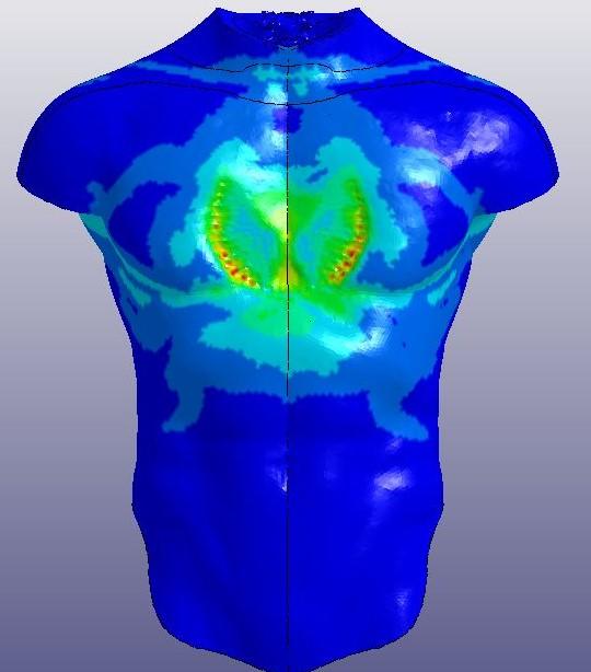 human-body-computational-model